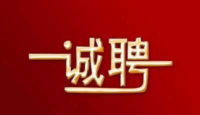 《井冈山儿女》剧组招聘男性群众演员,赶紧来报名吧!!!