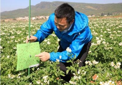 骄傲!吉水双村人当选国际生物防治组织副主席