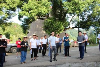 文峰镇召开农村人居环境整治工作现场推进会