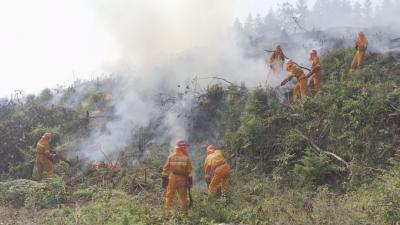 我县开展2020年森林火灾应急演练