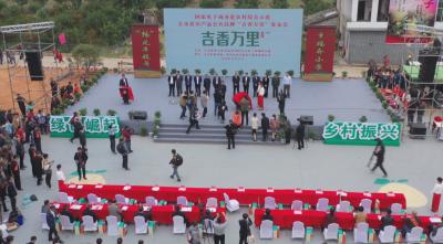 2020年中国农民丰收节吉水活动暨白水 第二届蜜柚节及吉香万里品牌发布会隆重开幕