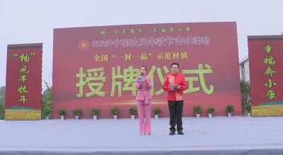 """我县举行2020年""""中国农民丰收节""""吉水活动暨白水第二届蜜柚节系列活动"""