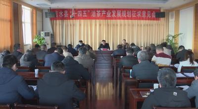 """我县召开""""十四五""""油茶产业发展规划征求意见会"""