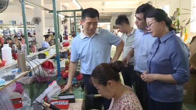 吴诚、王向红到八都工业园区调研指导工作