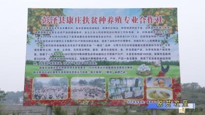 """彭泽县创新""""消费扶贫""""模式解决扶贫农产品滞销问题"""