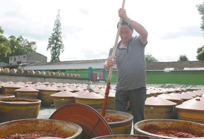 四川郫县豆瓣酱传统制作技艺传承人陈述承—— 手工酿制 酱味香浓(工匠绝活)