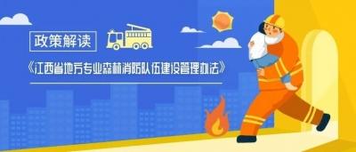 图解 | 江西地方专业森林消防队伍如何建设和管理?这张图说清楚了!