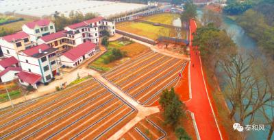 红土地上换新颜 ——泰和县传承红色基因推动乡村振兴速写