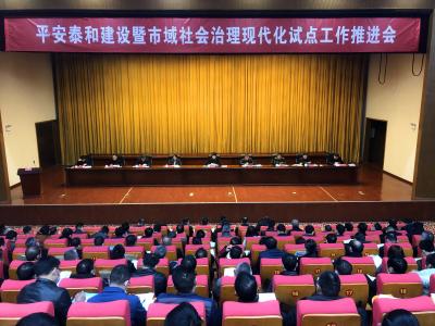 平安泰和建设暨市域社会治理现代化试点工作推进会议召开