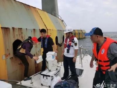 上港珠澳大桥钓鱼,11人被抓!