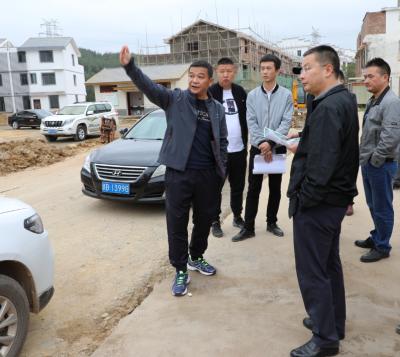 廖乐春深入潭口、潭东镇督导返迁安置点项目建设工作