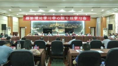 我县召开县委理论学习中心组专题学习会议