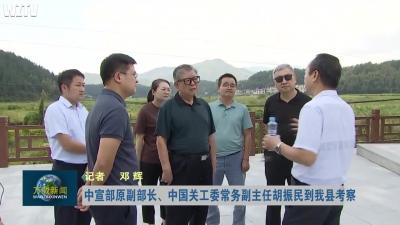中宣部原副部长、中国关工委常务副主任胡振民到我县考察
